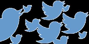 twitter удалит подозрительные аккаунты