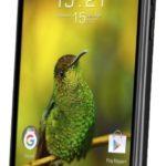 Смартфон с мощной батареей Fly FS530 Power Plus XXL